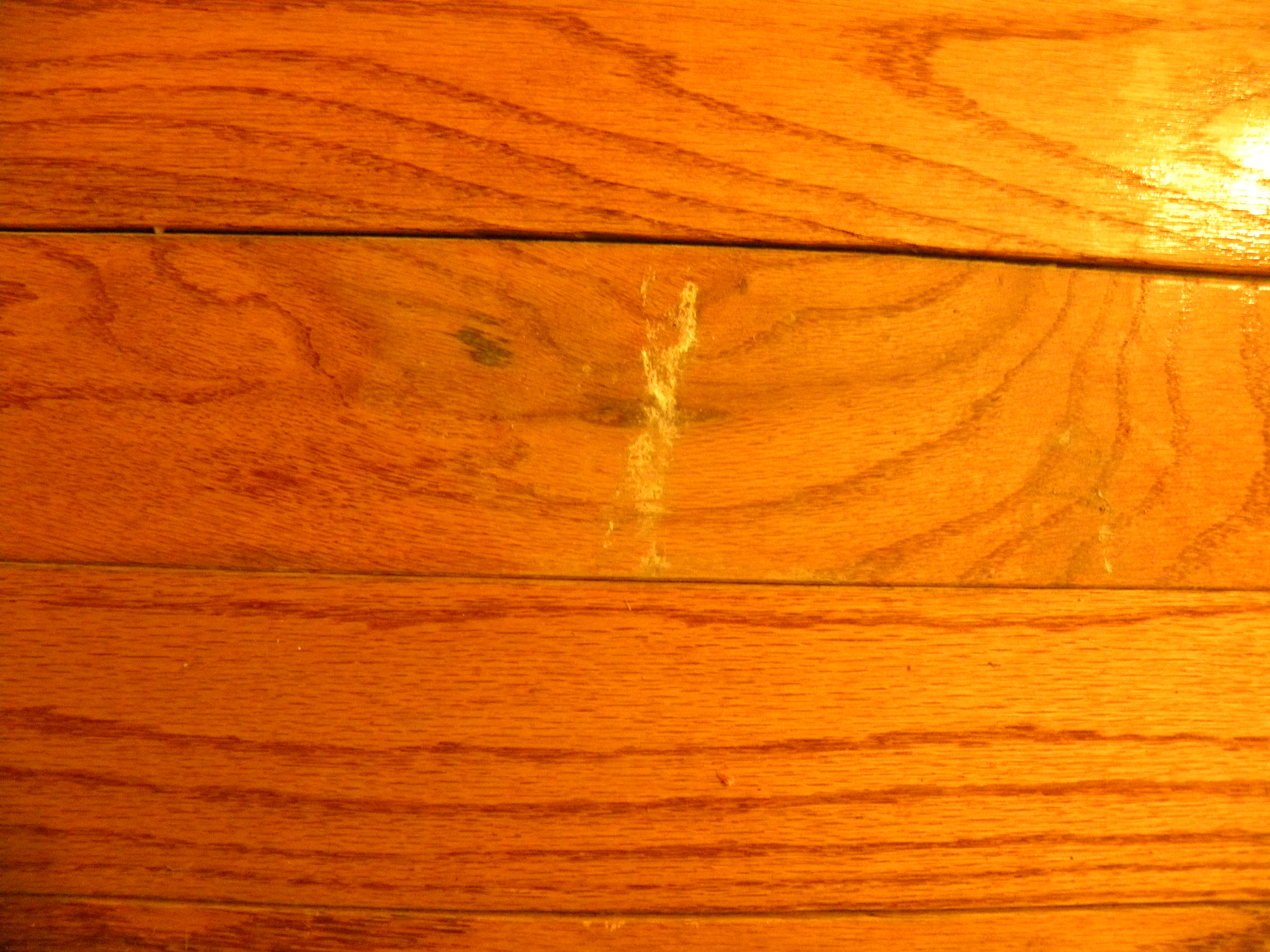 How to repair hardwood floor damage pro construction guide for Hardwood floors repair