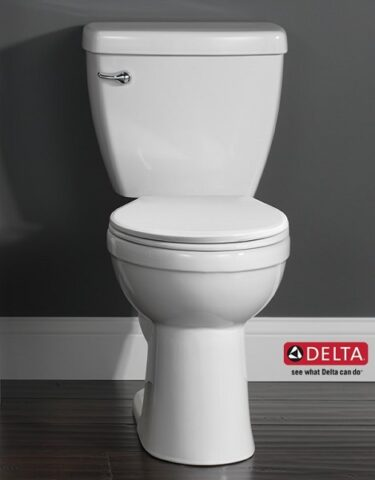 Delta Foundations toilet